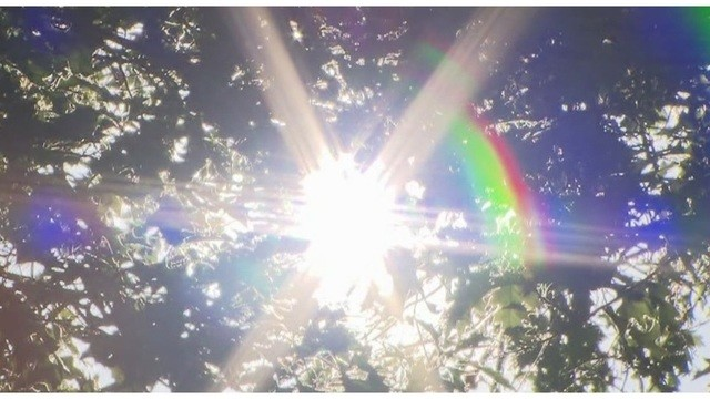 Фото солнца. В Портленде установится жаркая погода