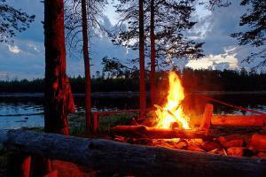Лесохозяйственная служба убедительно просит следить за кострами. На фото костер в лесу