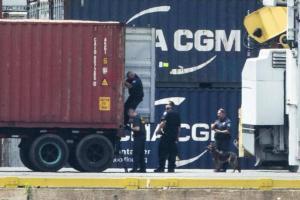 В США изъяли 16 тонн кокаина – одну из крупнейших партий в истории. На фотографии контейнер с запрещенным веществом