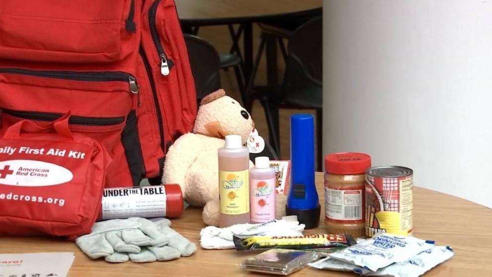 На случай землетрясения специалисты советуют иметь «тревожный чемоданчик». На фотографии вещи, которые должны быть под рукой