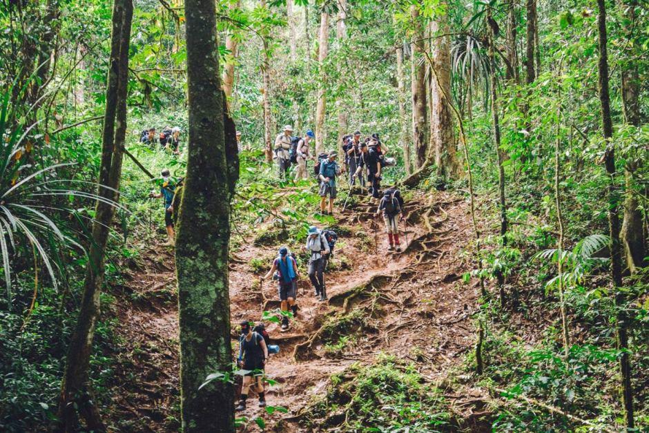 Национальный лес Gifford Pinchot принимает новые предложения по организации мероприятий для отдыха. На фото Национальный лес